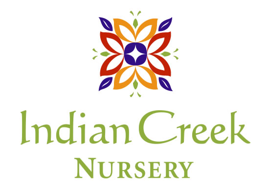 Indian Creek Nursery